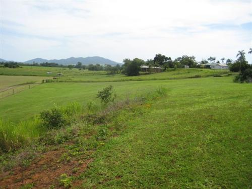 Property For Sale Innisfail 4860 QLD 6