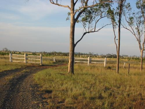 Property For Sold Banana 4702 QLD 4