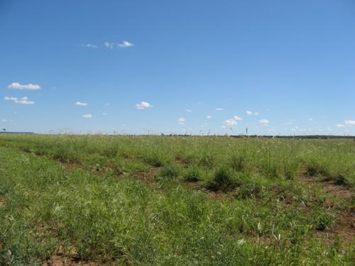 Property For Sold Longreach 4730 QLD 4